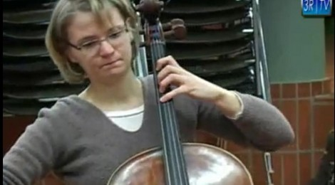 Das Collegium Musicum im Porträt