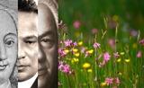 Frühling Collage - Kopie - Kopie